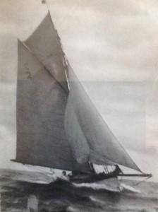 Windflower (H.G. Pitcher) 1932